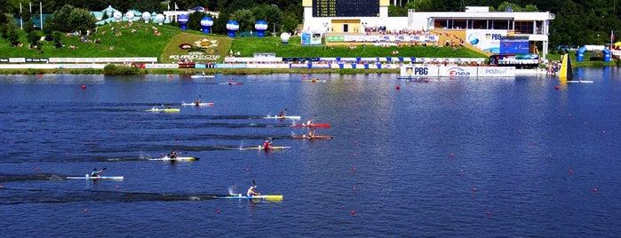 Jezioro Maltańskie is one of Poznan!.
