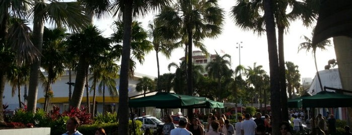 Lincoln Road Mall is one of The Magic City Miami.
