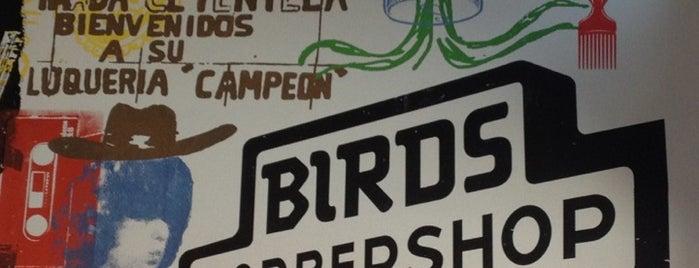 Birds Barbershop is one of Tempat yang Disukai Tejas.