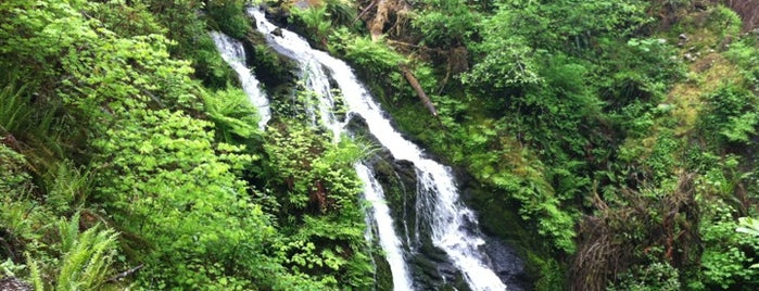 Olympic National Forest is one of National Recreation Areas.
