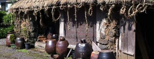 Seongeup Folk Village is one of Korea D2.