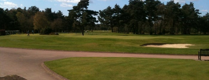 Pine Ridge Golf Course is one of Round of golf anyone?.
