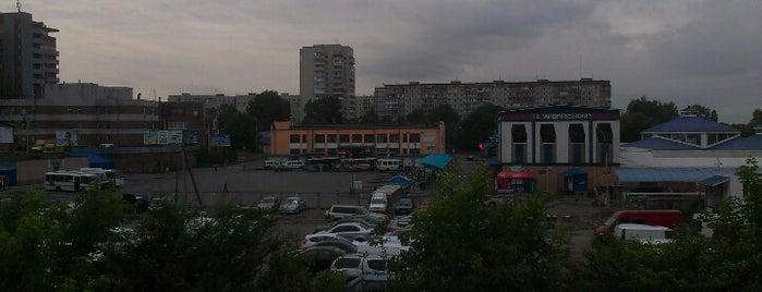 Автостанция «Ровно» is one of Советы, подсказки.