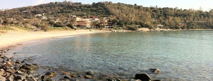 Spiaggia di Porto Frailis is one of IT - Sardinien.