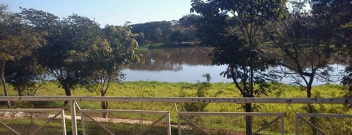 Lago Municipal is one of Posti che sono piaciuti a Mayara.