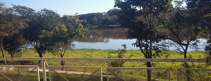 Lago Municipal is one of Locais curtidos por Mayara.