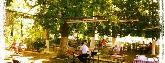 Hüsnügüzel Termal & Çay Bahçesi is one of Best places in Bursa, Türkiye.