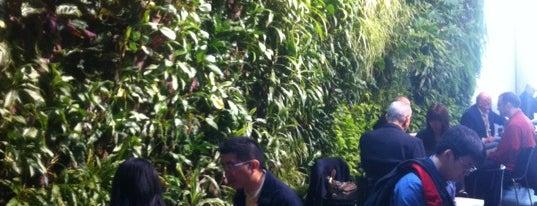 David Rubenstein Atrium at Lincoln Center is one of Best NYC Green Spots 2012!.