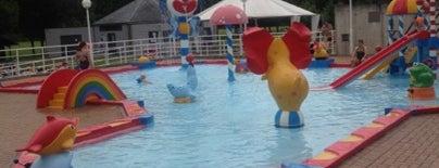 Zwembad Netepark is one of Uitstap idee.