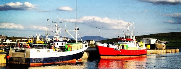 The Dingle Marina is one of Mark's list of Ireland.