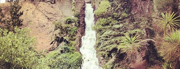 Prayerbook Falls is one of San Francisco Must Experiences.