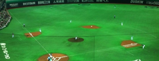 FUKUOKA PayPay Dome is one of badger.