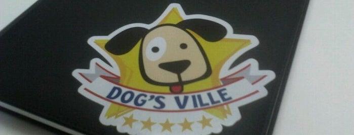 Dog's Ville is one of Projetos Comerciais escritório IDOETA arquitetura.