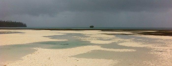 Le Méridien Île des Pins is one of Beach Destinations Around the World.