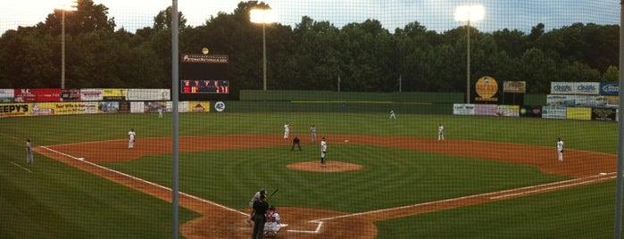 G Richard Pfitzner Stadium is one of Minor League Ballparks.