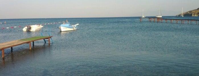 Celep Veli Beach Club is one of Bodrum Deniz.