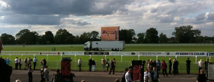 Royal Windsor Racecourse is one of Lieux qui ont plu à Carl.