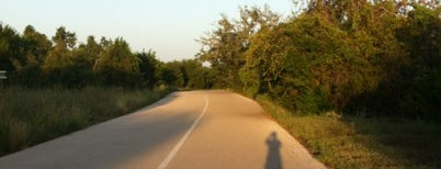 The Veloway is one of Great Running Trails in Austin.