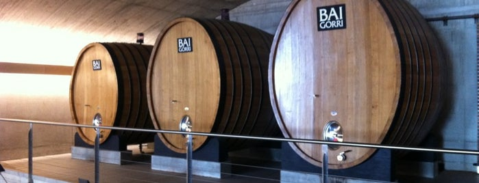 Bodegas Baigorri is one of Rioja wineries.