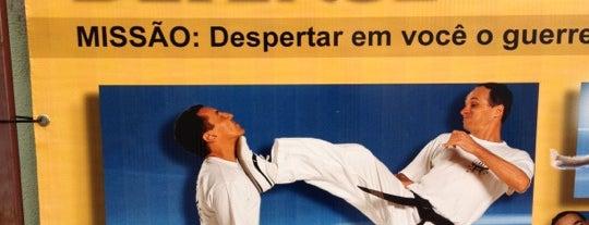Top Defense / Federação Sul-americana de Krav Maga is one of Locais curtidos por Jugdar.
