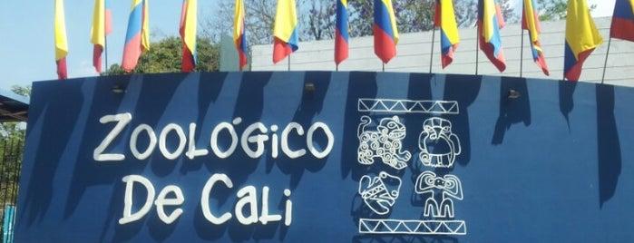 Zoológico de Cali is one of Favoritos en Colombia.