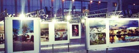 Stacijas laukums is one of Art Galleries & Art Museums in Riga.