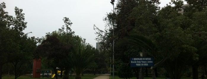 Parque San Borja is one of Lugares, plazas y barrios de Santiago de Chile.