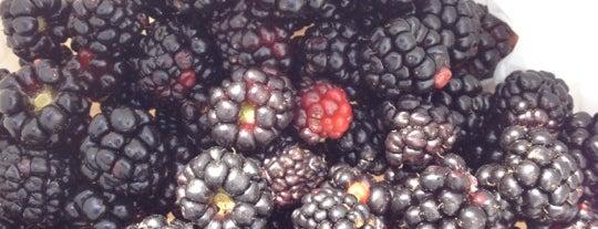 Neil's Berry Farm is one of Orte, die Jim gefallen.