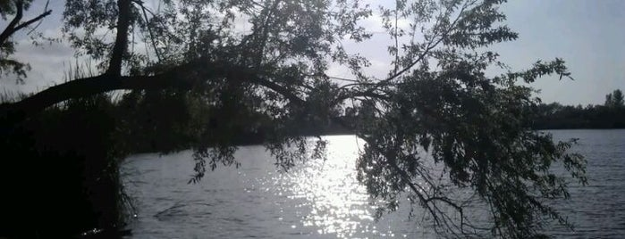Guajome Regional Park is one of Jessica : понравившиеся места.