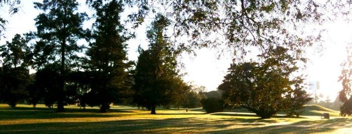 Campo Público de Golf Villa Adelina is one of Lugares favoritos de Sofia.