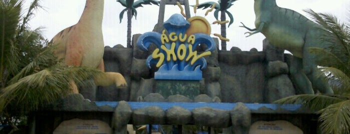 Água Show Park is one of Voumirさんのお気に入りスポット.