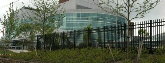 St. Joseph's Regional Medical Center is one of Crystal : понравившиеся места.