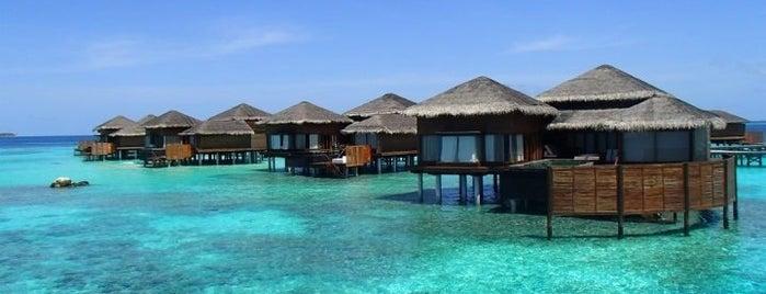 Jumeirah Dhevanafushi  Maldives is one of Jumeirah Hotels & Resorts Worldwide.