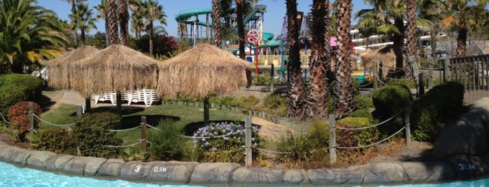Six Flags Hurricane Harbor Concord is one of Posti che sono piaciuti a Bearly A..