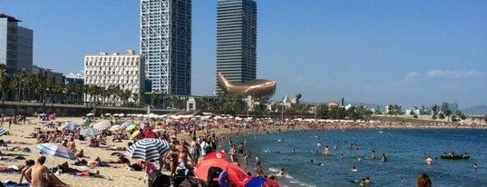 Playa de la Barceloneta is one of Barcelona.
