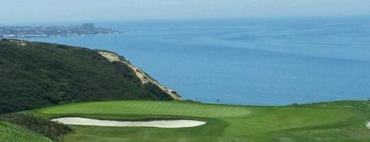 Torrey Pines Golf Course is one of Sandy Ayyygoo.