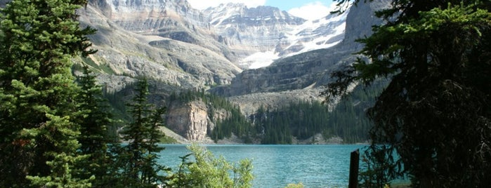 Yoho National Park is one of Locais curtidos por Karen.