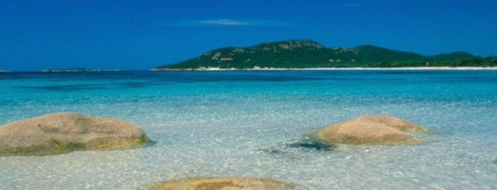 Corsica del Sud