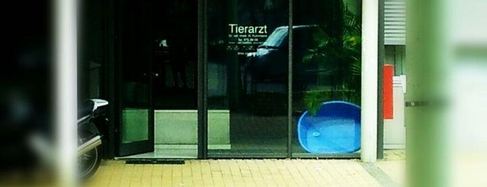 Tierarzt Dr. Fuhrmann is one of Orte, die Daniel gefallen.