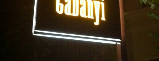 Bar Gabányi is one of Die Nacht in München.