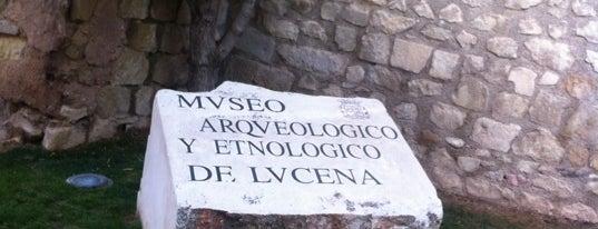 Museo Arqueologico Y Etnologico De lucena is one of Actividades de Ocio en Lucena.