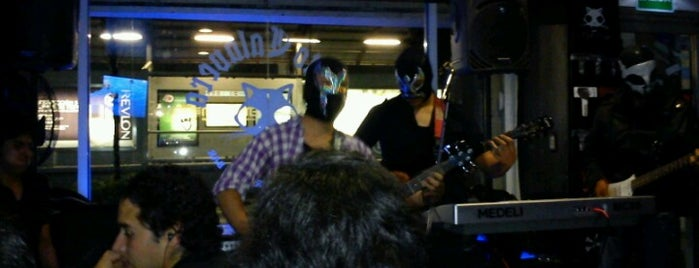 Gato Calavera is one of Rock Bar's.
