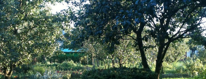 Lypnyky Garden is one of Lviv. Nature.