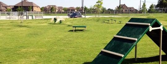 Freedom Dog Park is one of Locais curtidos por M.