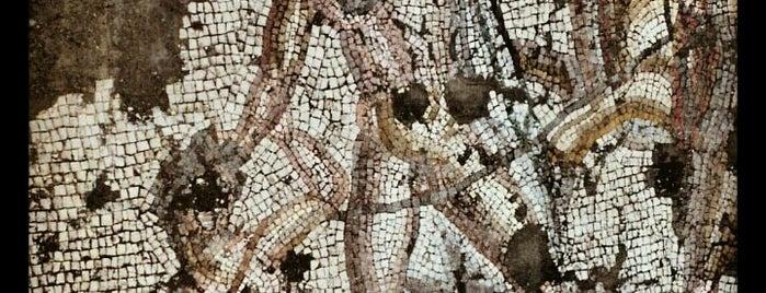 Misis Mozaik Müzesi is one of Archaeology Museums of Turkey.