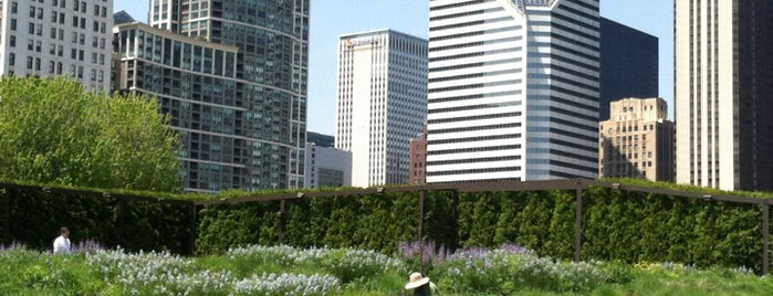 Lurie Garden is one of 101 places to see in Chicago before you die.