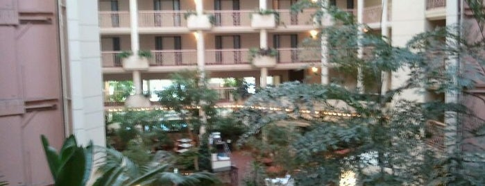 Embassy Suites by Hilton is one of Lugares favoritos de Scott.