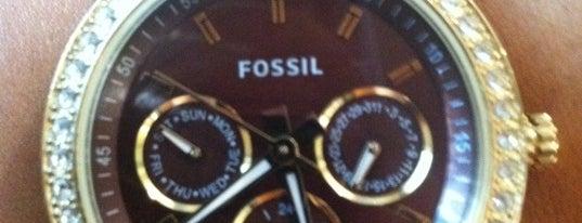 Fossil is one of Tempat yang Disukai Carol.