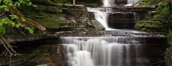 Buttermilk Falls State Park is one of Finger Lakes.