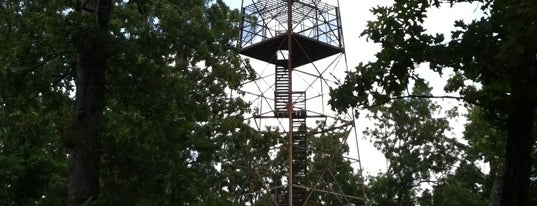 Knob Lick Lookout Tower is one of Places that make you laugh.